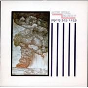 """Skeletal Family Promised Land (Extended Version) UK 12"""" vinyl"""
