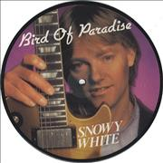Click here for more info about 'Snowy White - Bird Of Paradise'