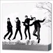 Click here for more info about 'The Beatles - Jump Canvas Print'