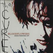 Click here for more info about 'Bloodflowers'