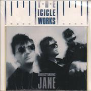 Click here for more info about 'The Icicle Works - Understanding Jane'