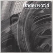 Click here for more info about 'Underworld - Barbara Barbara, We Face A Shining Future: Deluxe'