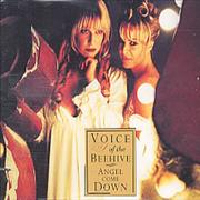 Click here for more info about 'Voice Of The Beehive - Angel Come Down'