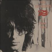 Click here for more info about 'Waterboys - A Pagan Place'