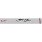 Westlife Angel UK video Promo