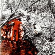 Click here for more info about 'The White Stripes - Dead Leaves And The Dirty Ground'
