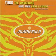 Click here for more info about 'York - The Awakening'