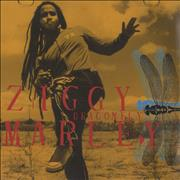 Click here for more info about 'Ziggy Marley - Dragonfly'