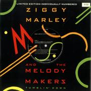 Click here for more info about 'Ziggy Marley - Tumblin' Down'